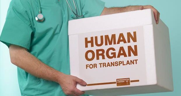 What is Life Like After Liver Transplant?